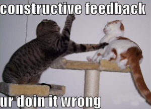Why You Should Learn to Accept Feedback